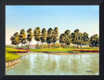 Sawgrass TPC 17Th Hole