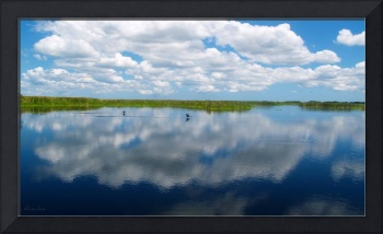 Skyscape Reflections Blue Cypress Marsh Florida C1