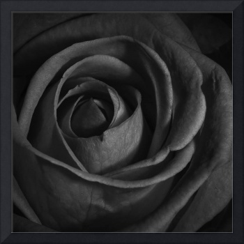 Black roses and a bottle of wine........