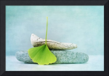 wood, stone and a gingko leaf