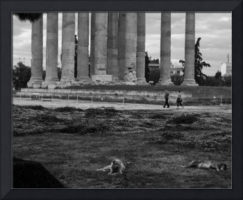 Adespota at the Temple of Zeus, Athens, Greece