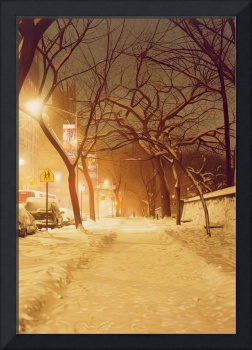 Central Park Nocturnal Snow II by Max Ferguson