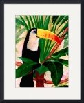 Toucan Jungle Bird Tropical Wildlife Art by print Rick Short Fine Art Prints and Posters :  animal fine art print fine art painting decorative accessories