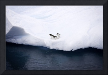 Penguins on Iceberg Antarctica