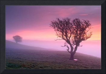 Misty Sunrise - Kendal, Cumbria