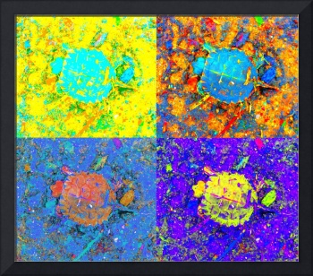 A Sequence of Toddler Turtles