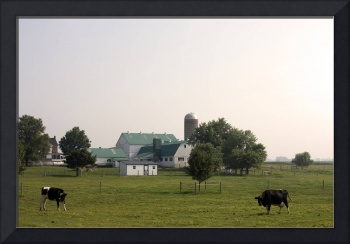 Amish Farm in Early Morning