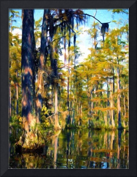 Cypress Gardens South Carolina