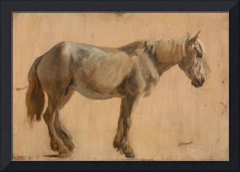 Jacques-Laurent Agasse~Study of a Grey Horse