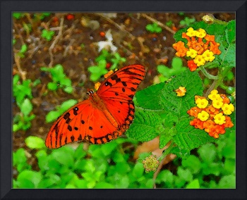 Two Flowers & The Butterfly