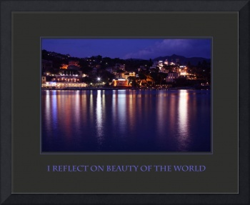 I Reflect On Beauty of the World Affirmation