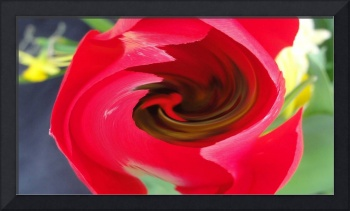 Red Swirl Flower