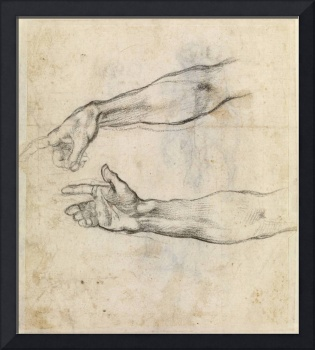 Michelangelo Buonarroti~Study of two arms for 'The