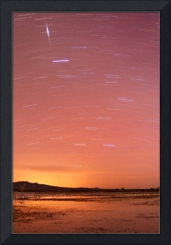 Bosque by Twilight Star Trails