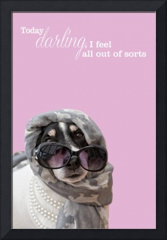 Funny Dog and Text Poster - Scarf Beads and Shades