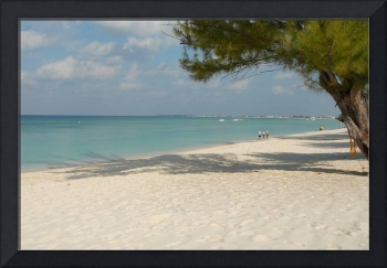 Cayman Islands : Seven Mile Beach Mornings