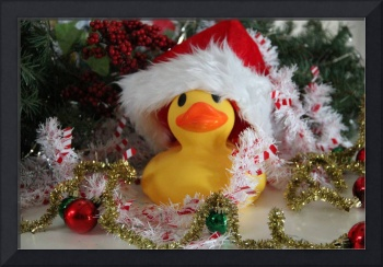 Jingle Duck