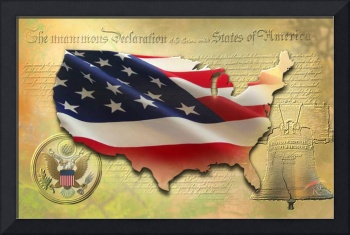 Decorative US Map