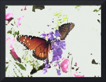 Wings and Petals in Abstract