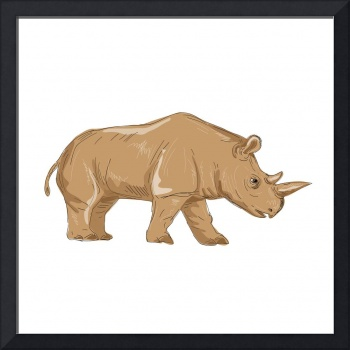 Northern White Rhinoceros Side Drawing