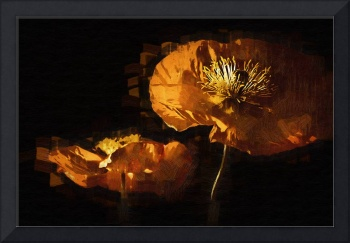 Orange Poppies Two