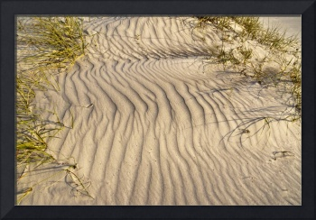 Sand Ripples and Dune Grass