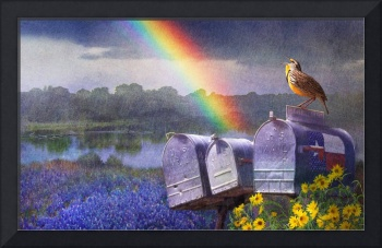 mailboxes bluebonnets and meadowlark in rainbow