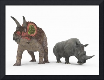 An adult Triceratops compared to a modern adult Wh