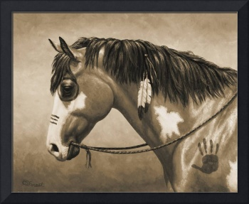 Native American Pinto War Horse in Sepia
