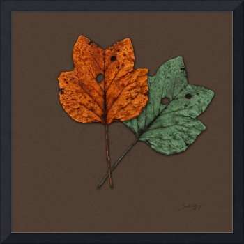 Two Autumn Leaves Modern Minimalism by Ginette