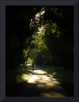 Shadowed Path
