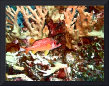 Red Squirrelfish in Watercolor