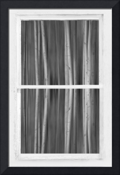 Surreal Dreamy Aspen Forest White Rustic Window