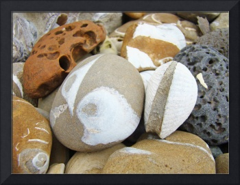 Fossil Beach Rocks Shells art prints Coastal