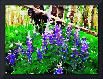 Lupines in the Trees