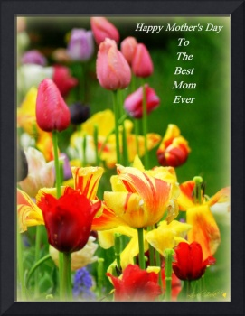 Happy Mother's Day Tulips
