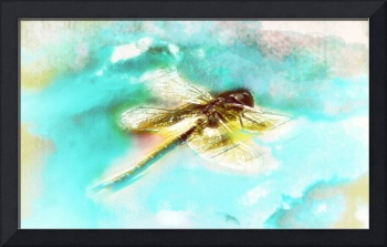 Dragonfly Abstract