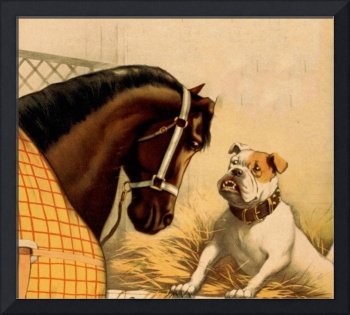 Vintage English Bulldog & Horse Illustration (1899