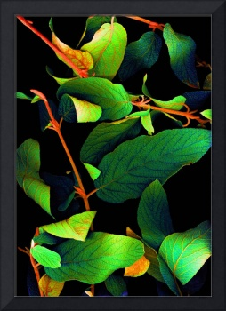 Chromatic Leaves III