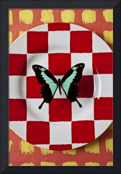 Green and black butterfly on red checker plate