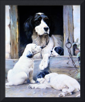Mother dog and her pups