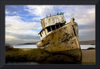 Beached at Point Reyes