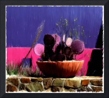 Cactus Pot on Stone Wall