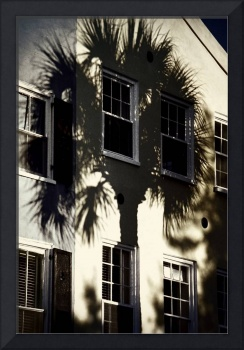 Palmetto Window Shade