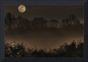 April Moon Over the Hollow by Jim Crotty