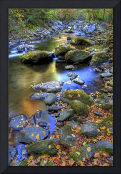 Autumn Stream Great Smoky Mountain NP