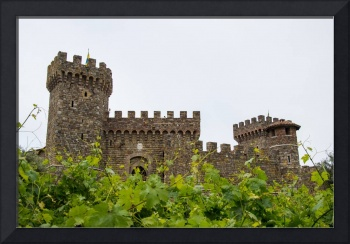 Castle View Through The Grapes