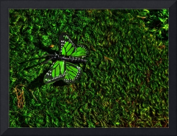 Green moss and butterfly
