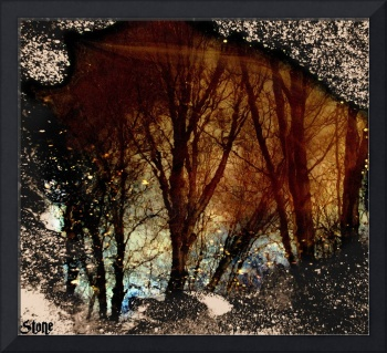Natures Looking Glass 3