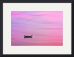 Cape Cod : Pink Sunset by Christopher Seufert